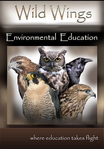 Wild Wings Environmental Education
